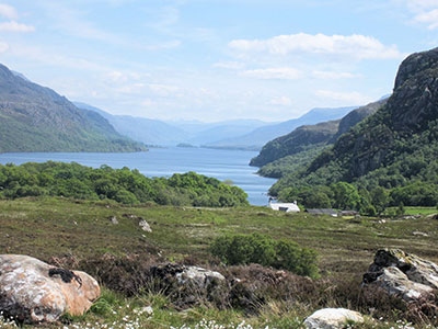 Looking over Loch Maree